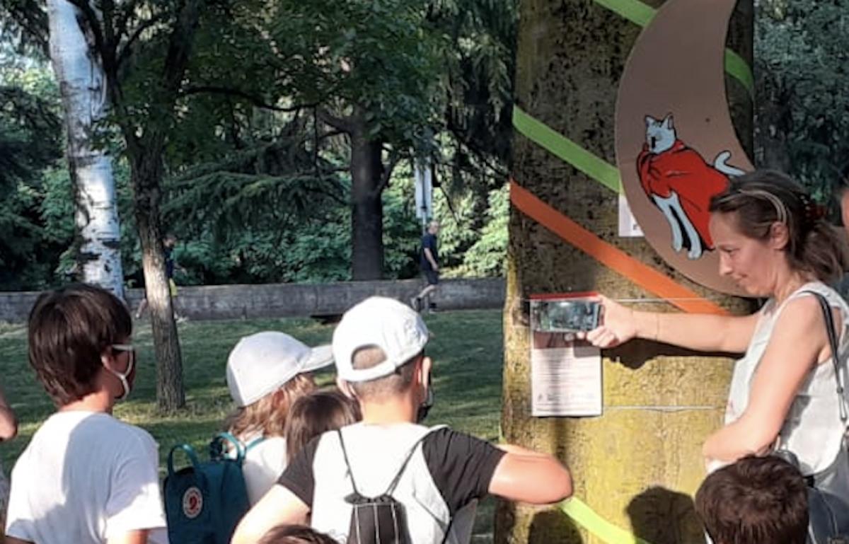 #cosechesuccedono dopo il lockdown nei quartieri di Reggio Emilia.
